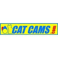 Cat Cams