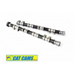 Peugeot Citroen EW10J4 Road and Race Camshafts by Cat Cams