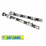 Ford Duratec 2.0 Fast Road Camshaft