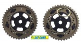 Peugeot Citroen EW10J4 Adjustable Cam Pulleys